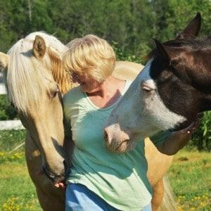 Animal Wellness through Communication